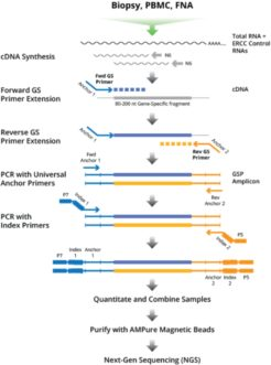 Targeted RNA-Seq Kits