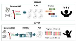 Targeted sgRNA NGS for Pooled CRISPR Libraries (Hybridization Capture-based)